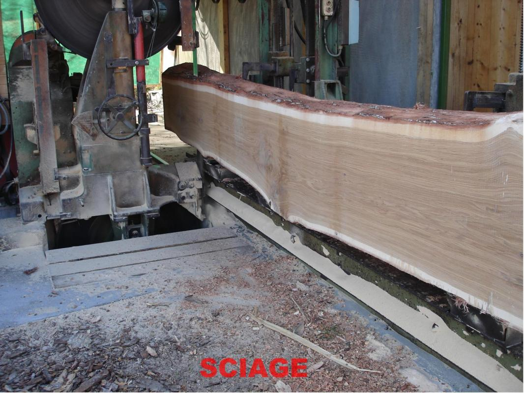 Dsc00967 Sciage du bois